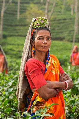 GENNOVATE | Gender and agriculture